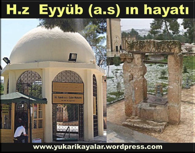 H.z Eyyüb (a.s) ın hayatı