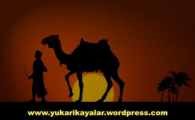 Hazret-i Muaviye,kimdir,ashabi-kiram-1-e1497841914935-1200x675