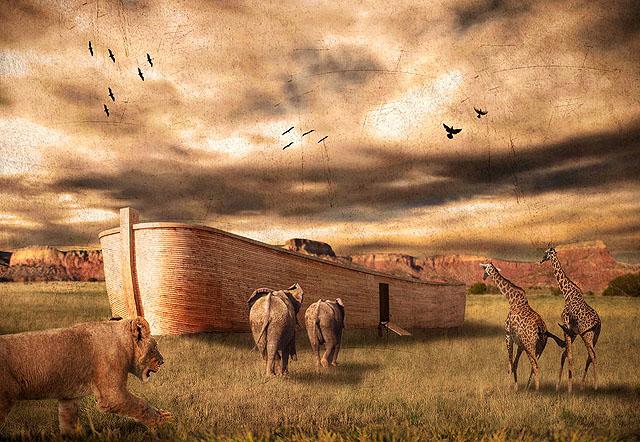 Nûh Kıssasının Mesaj ve Dersleri,ark_of_noah_by_robsonbatista-d2628ch