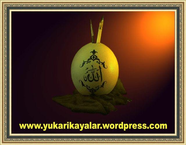 Allah,mucize resimler,yumurtada Allah yazisi
