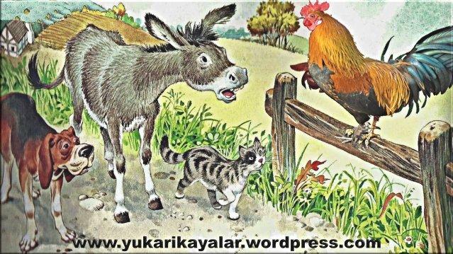Hayvanlar Kendi Aralarında Ne Konuşuyor - Dilini Merak Edenlere.,bremen-mizikacilari-masali-turkce-masal-dinle_8193460-56660_1920x1080