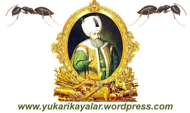 Kanuni Sultan Süleyman,sarayın bahçesindeki armut ağaçlarını kurutan karıncaların