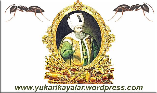 Karınca ve Kanuni Sultan Süleyman,kanuni-sultan-sc3bcleymansarayc4b1n-bahc3a7esindeki-armut-ac49fac3a7larc4b1nc4b1-kurutan-karc4b1ncalarc4b1n