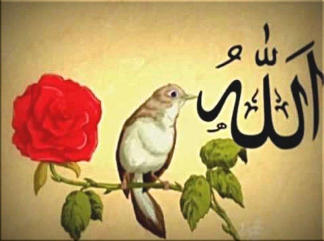 Gül, Bülbül ve İbrahim aleyhisselâm,kelimei-tevhidkelimei-sahadet