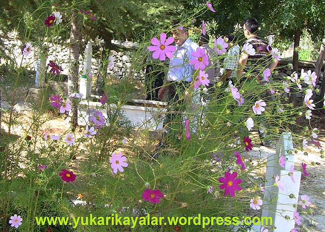 Kabir ziyareti,mezarlik,kabirleri ziyaret,arefe gunu,yasin okumak,goynem,beysehir,Bir Hadis Bir Yorum (Kabir Ziyareti)
