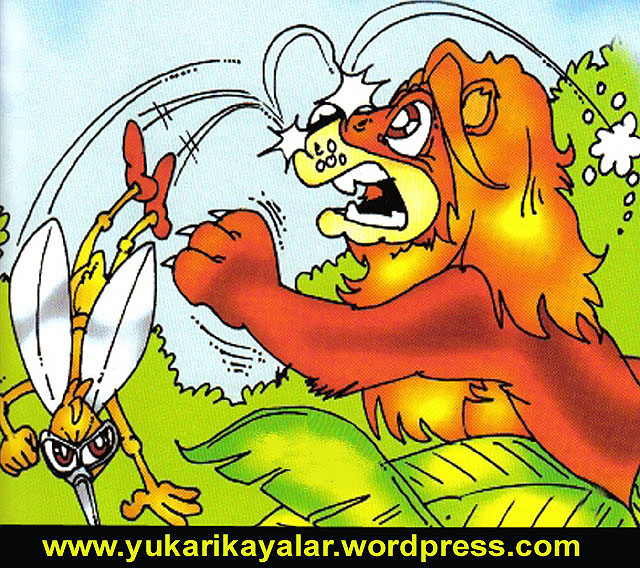 Aslan ile sivri sinek hikayesi,ASLAN ve SİVRİ SİNEK