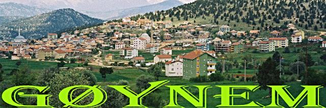 gynem912