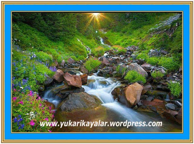 Cennet Ehli,Cennet Pınarları Kevser Havuzuna Dökülür