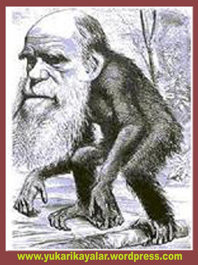 İsrailoğullarının Maymuna Çevrilmesi,Yahudilerin Maymun Olmaları