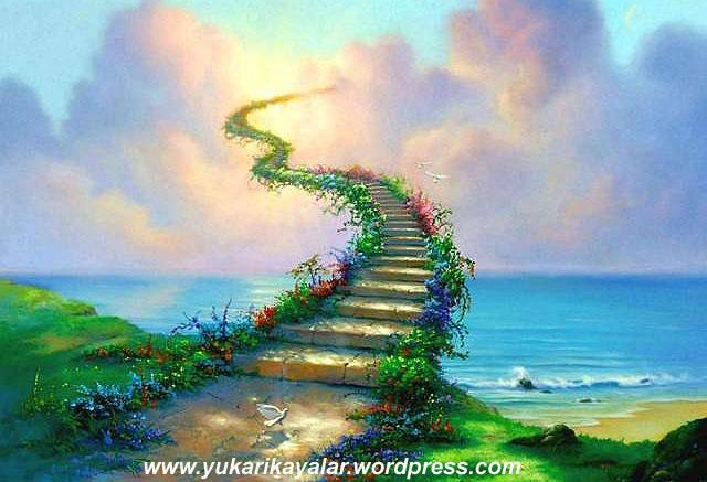 Cennetin Çarşısı