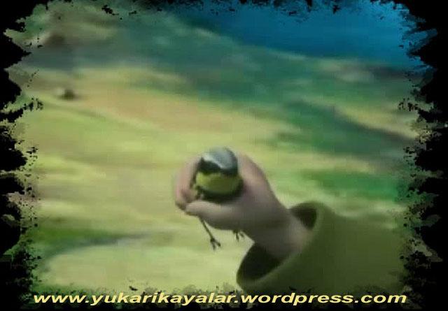 Kuşun üç öğüdü,kucuk-kusun-uc-ogudu copy.jpg