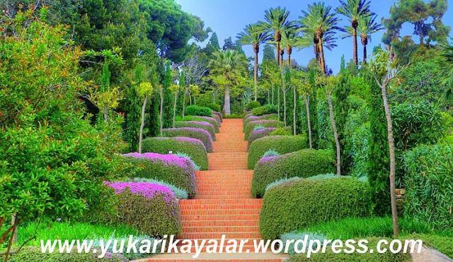 cennet,Marifetname – Erzurumlu İbrahim Hakkı Hazretleri