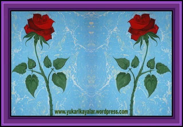 1,,,,Kalbi Yumuşatmanın Yolu,Muhyiddin Arabi, tasavvuf nedir,