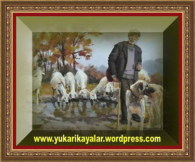 Biz Onu Çoban Abdullah'a Verdik