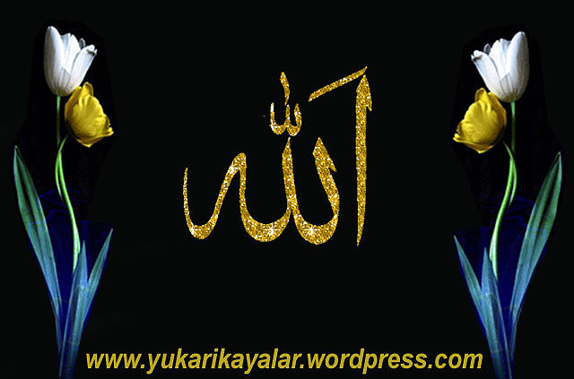 Zikr-i Cehrî,Zikir,dhikr,woduu,abdest,Allah lafzi,rabita,