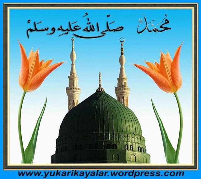 11Büyük Müjdeler,h.z muhammed Mekkeden medineye hicrethicret, (4)