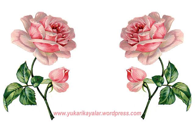 20120603_19y4237-copy