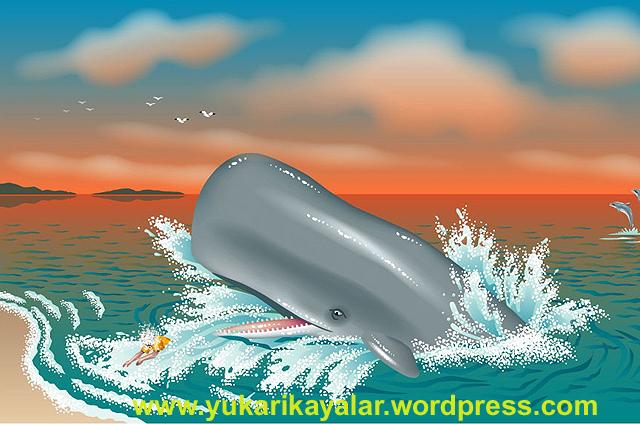 h.z. yunus,Yunus Peygamberin Kurtuluşu copy