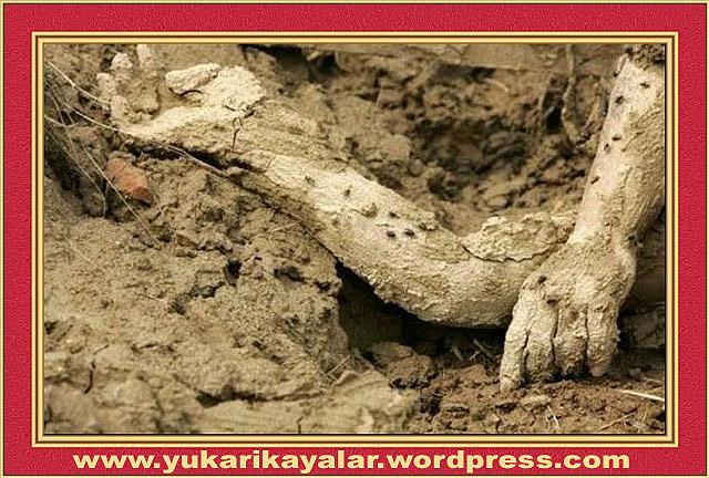 Adem Aleyhisselâm'ın Yaratılışı,Azrail Aleyhisselâm'ın Toprak Alması - İnsana Ateşle Azablanmasının Hikmeti,Teyemmüm