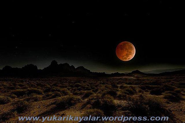 Gece ve Gündüz Neden Yaratıldı