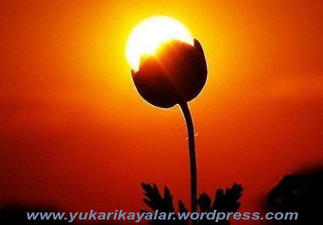 Muhyiddîn-i Arabf nin (k.s.) Duası.muhiddin ibni arabi,
