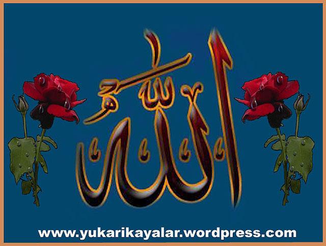 201tevekkul,tevhid,iman,kelimei tevhid,Allah,Allah lafzi,