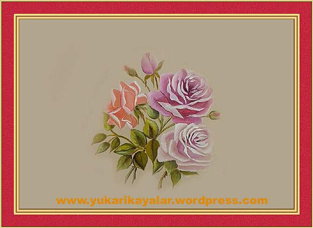 gul,rosa (2)