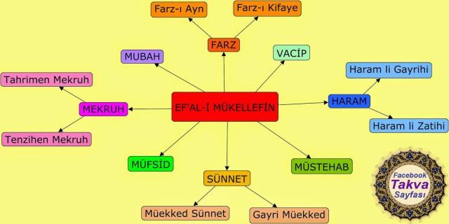 ef-al-i-mukellefin-nedir-seri-mukellefiyetler-islam-dininin