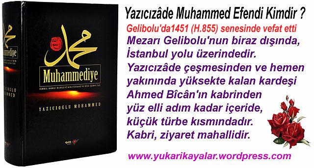 yazicizade-muhammed-efendi-kimdirmuhammediyye-kitabiyazici-salihahmed-bicangeliboluhaci-bayram-i-veli